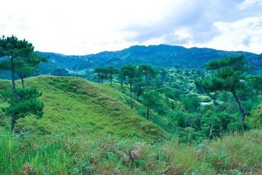 view of blueridge mountain house and lot subdivision in Baguio city
